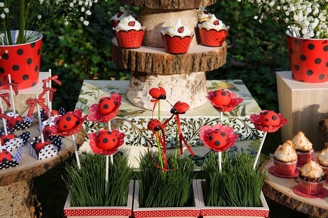 festa joaninha vermelha 8