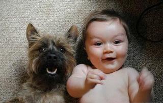 criancas e animais de estimacao fotos (12)