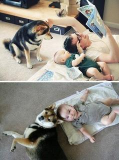 criancas e animais de estimacao fotos (13)
