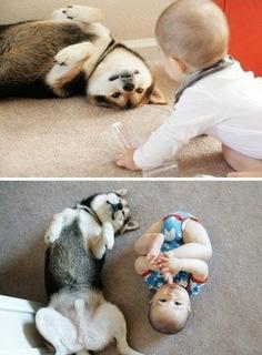 criancas e animais de estimacao fotos (14)