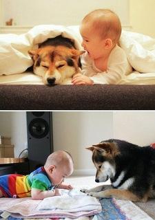 criancas e animais de estimacao fotos (15)