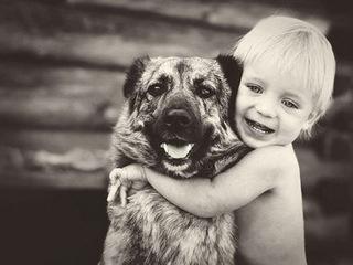 criancas e animais de estimacao fotos (20)