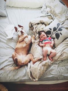 criancas e animais de estimacao fotos (21)