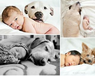 criancas e animais de estimacao fotos (8)