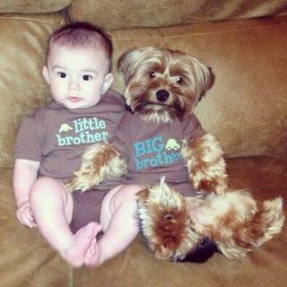 criancas e animais de estimacao fotos (9)