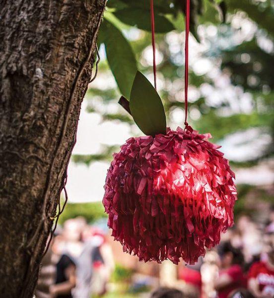 chapeuzinho vermelho festa  (6)