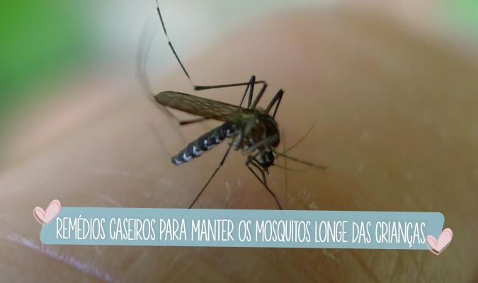 remedios caseiros para manter os mosquitos longe das criancas