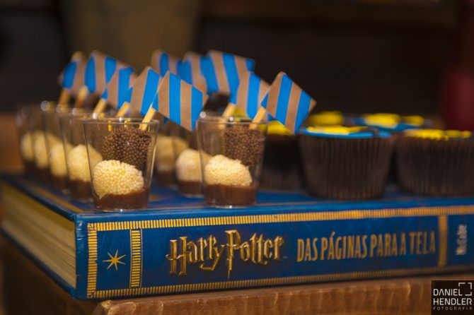 festa-harry_potter (16)