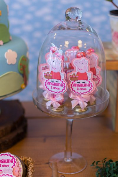 aniversario_tema_peppa_pig_piquenique-7